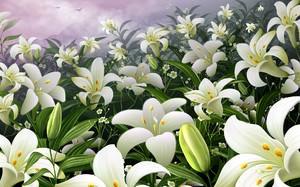 Цветок лилия мира
