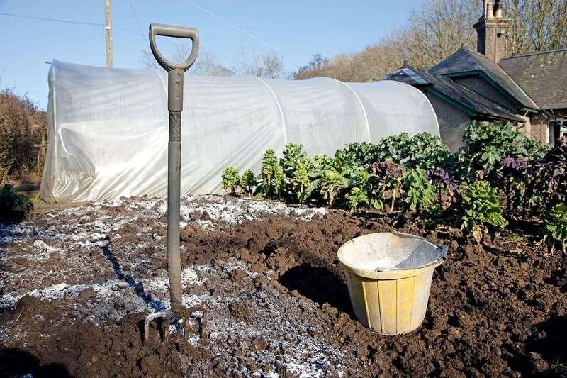 Как известковать почву