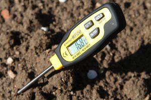 Известкование почвы весной