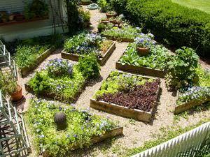 Ленивый сад и огород своими руками