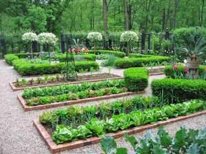 Ленивый огородник