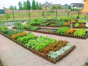 Ленивый сад с чего начать
