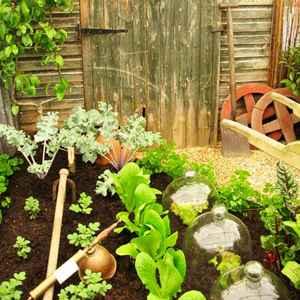 Сад для лентяев