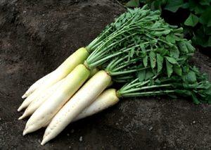 Список овощей и фруктов