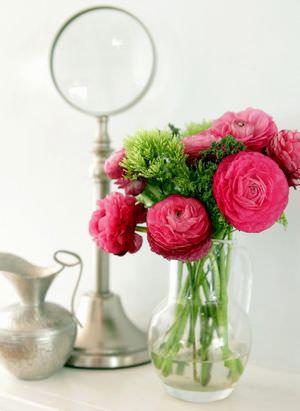 Какие цветы самые неприхотливые