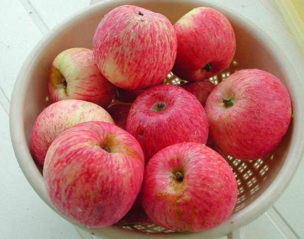 Яблоки «Боровинка» относятся к категории универсального использования