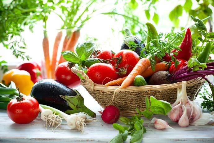 Главным результатом посевов осенью является возможность получения раннего и качественного урожая