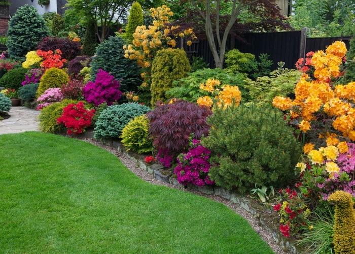 Выращивание декоративных растений
